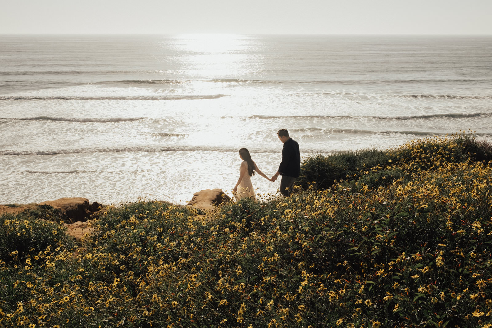 torrey pines engagement session take my hand