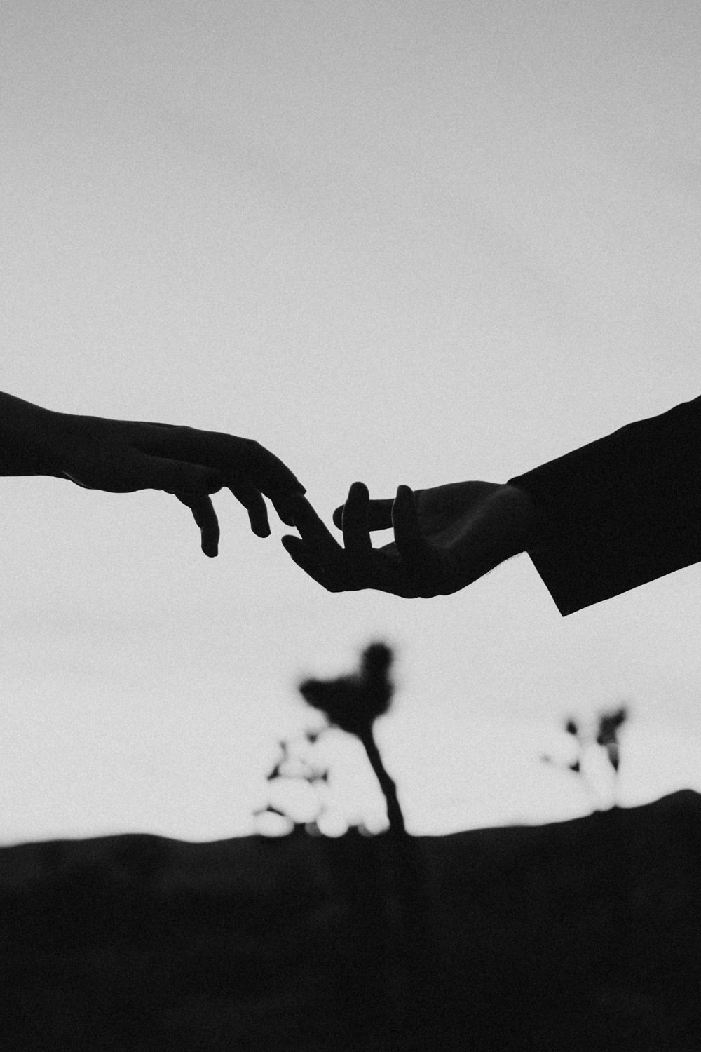 joshua tree + palm springs engagement hold my hand