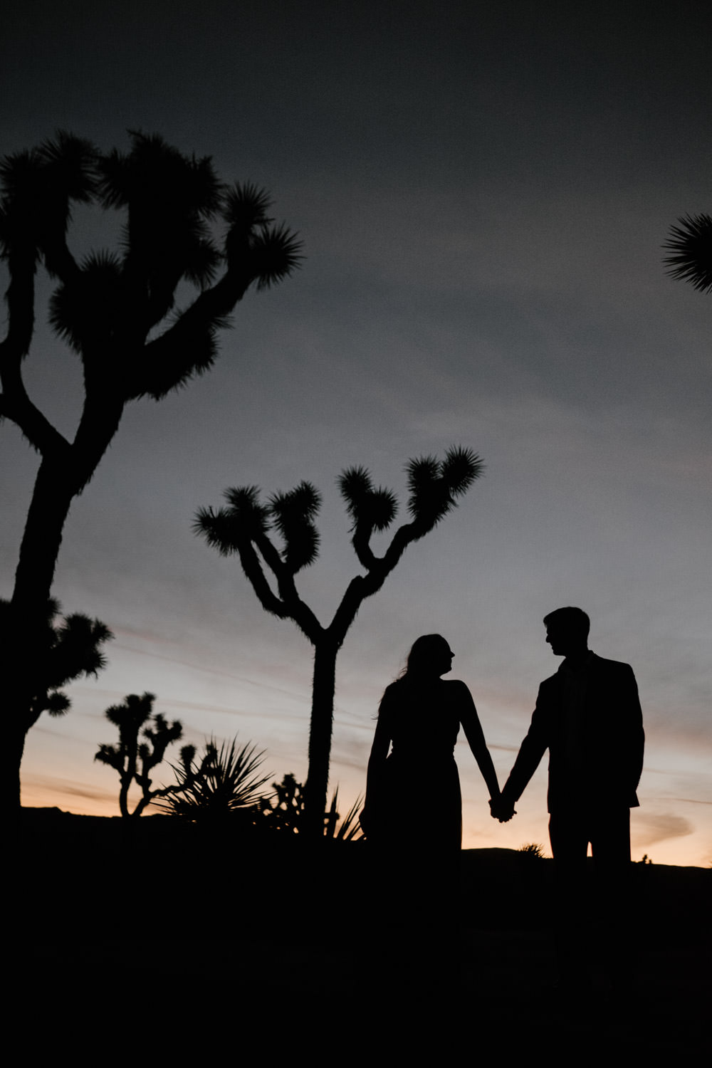 joshua tree + palm springs engagement just the sky