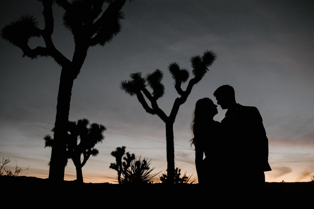 joshua tree + palm springs engagement last light