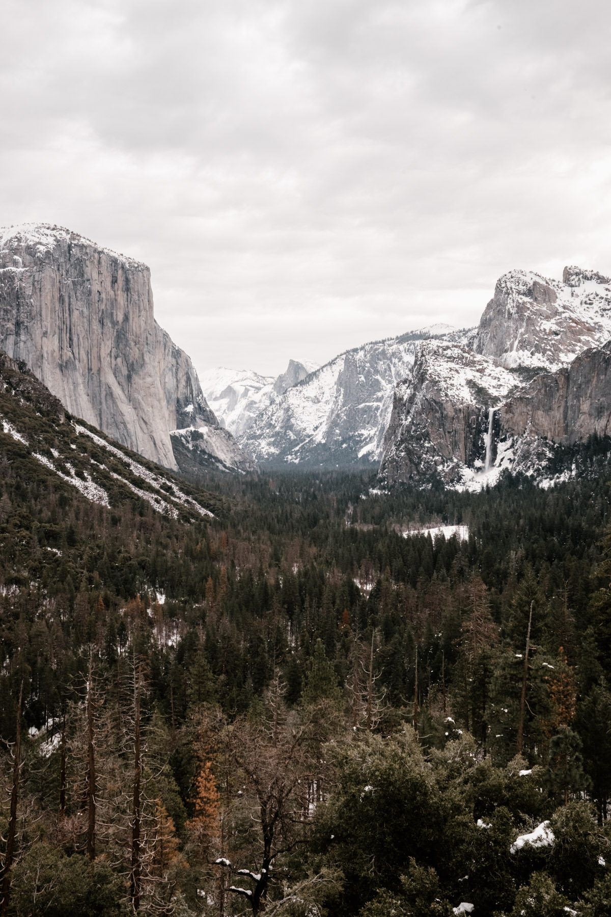 yosemite engagement session san diego wedding photographer 1