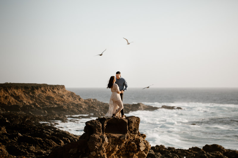 big sur engagement session bird coming to come cheer