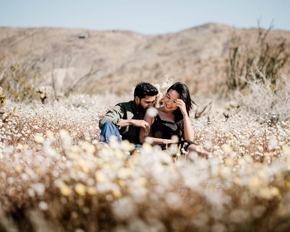 California top 33 epic engagement photography locations spring super bloom