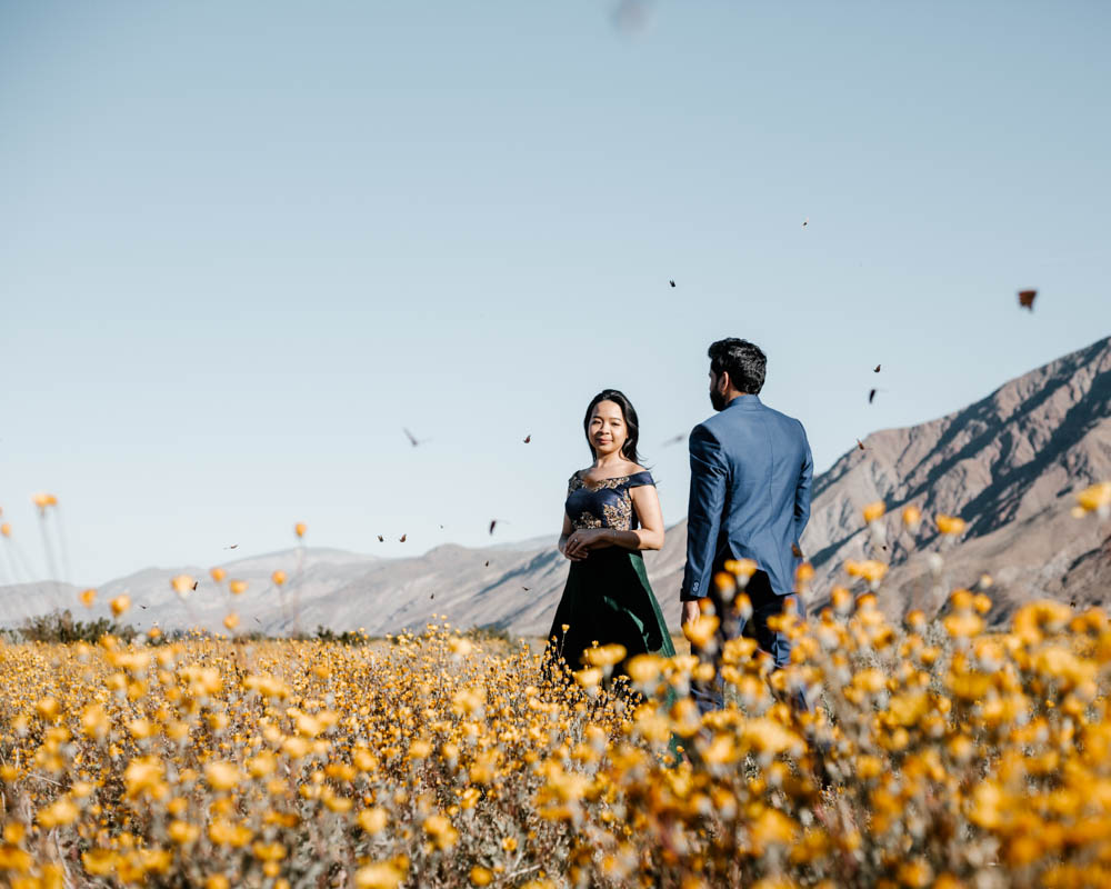 San Diego top 7 amazing engagement session locations anza borrego desert flower bloom