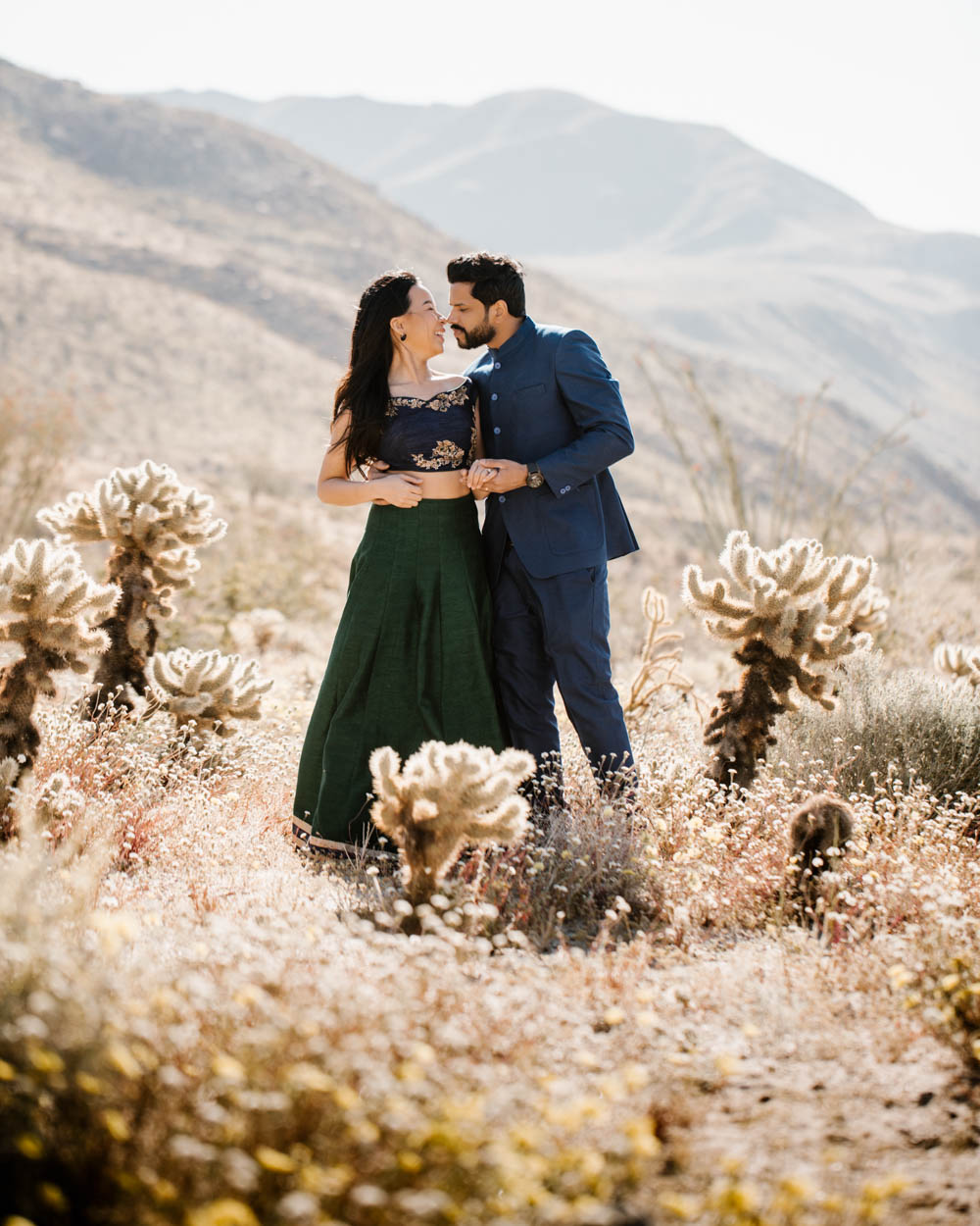 California top 33 epic engagement photography locations anza borrego desert sunshine