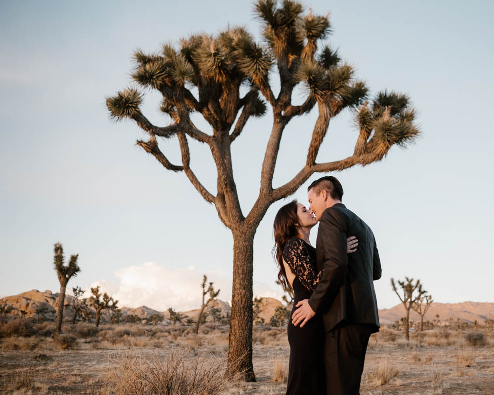 California top 33 epic engagement photography locations joshua tree at sunset