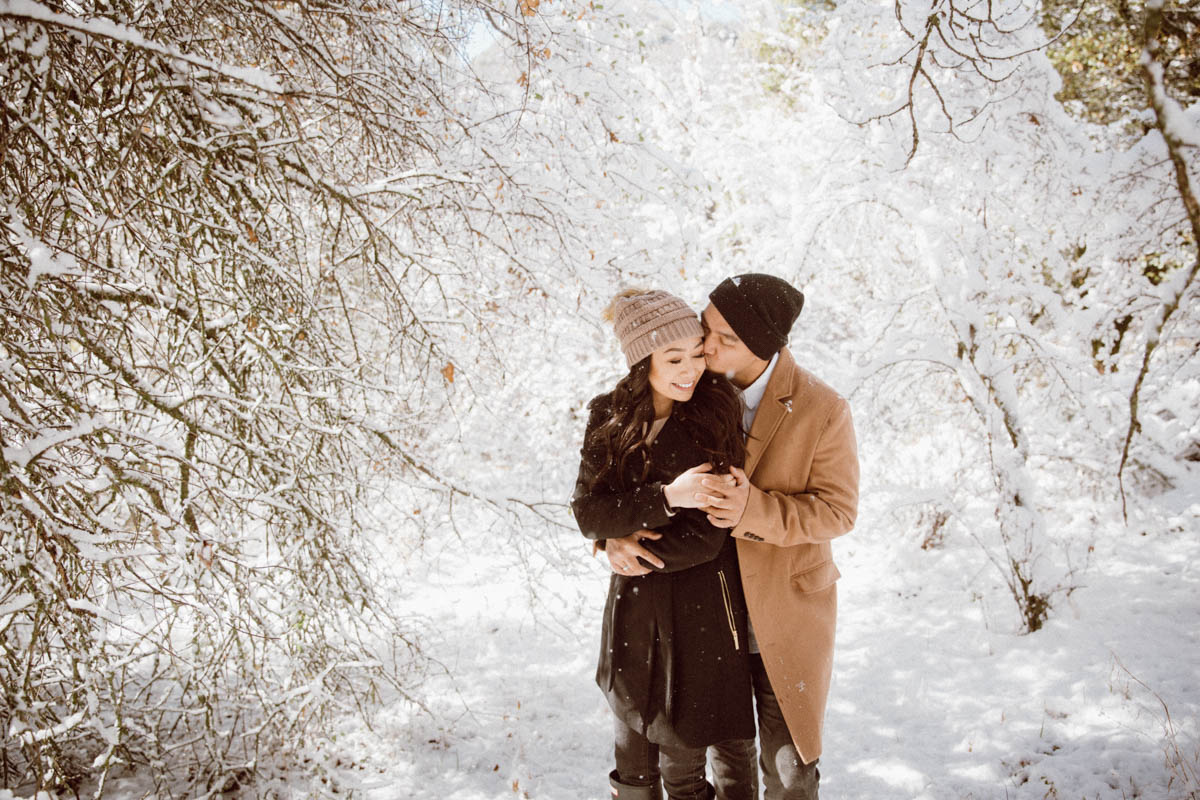 sequoia national park engagement session intimate moment